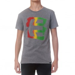 ICON SPRAYED TEE GRIS